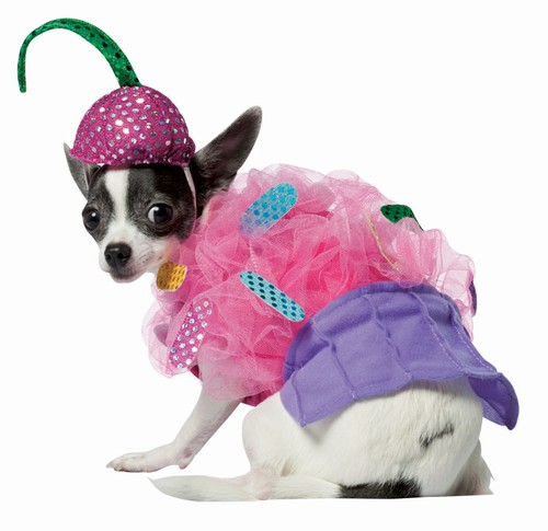 Dog Costumes  sc 1 st  Dogfather and Co. & Dog Costumes | Dogfather and Co. | Canine Retail and Dog Grooming in ...