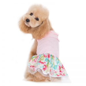 dreamy-floral-dress-dog-10