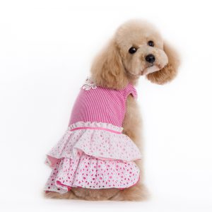 eyelet-flower-dress-dog-2