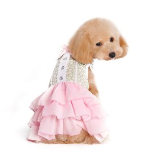 gatsby-girl-dress-dog-1
