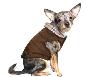 hip doggie puffer vest dog