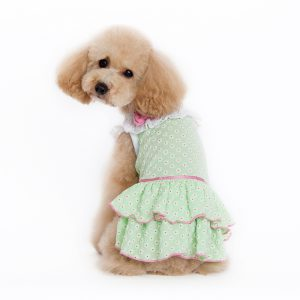 little-flower-dress-dog-1
