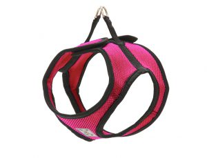 cirque-harness-pink