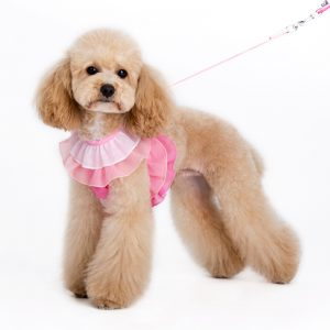 easygo-multi-ruffle-dog-2