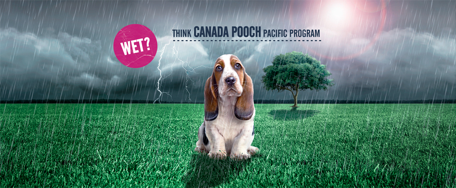 Canada-Pooch-Rain-Sized-for-Web