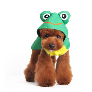 frog-raincoat-dog-3