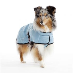 Hurtta CoolingCoat on dog