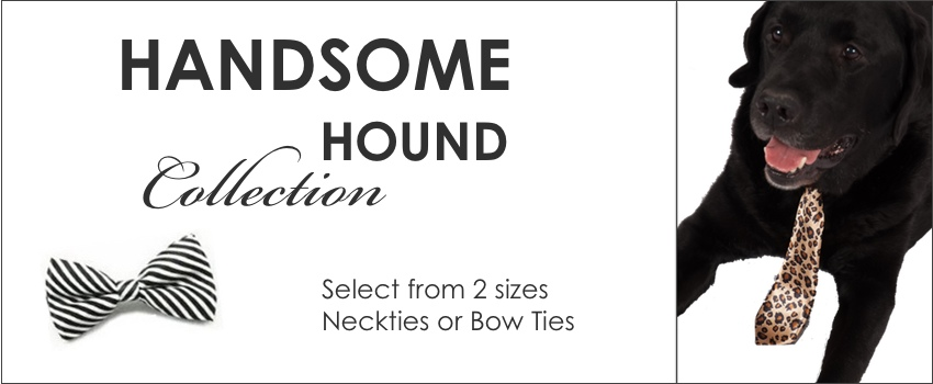 bow ties banner