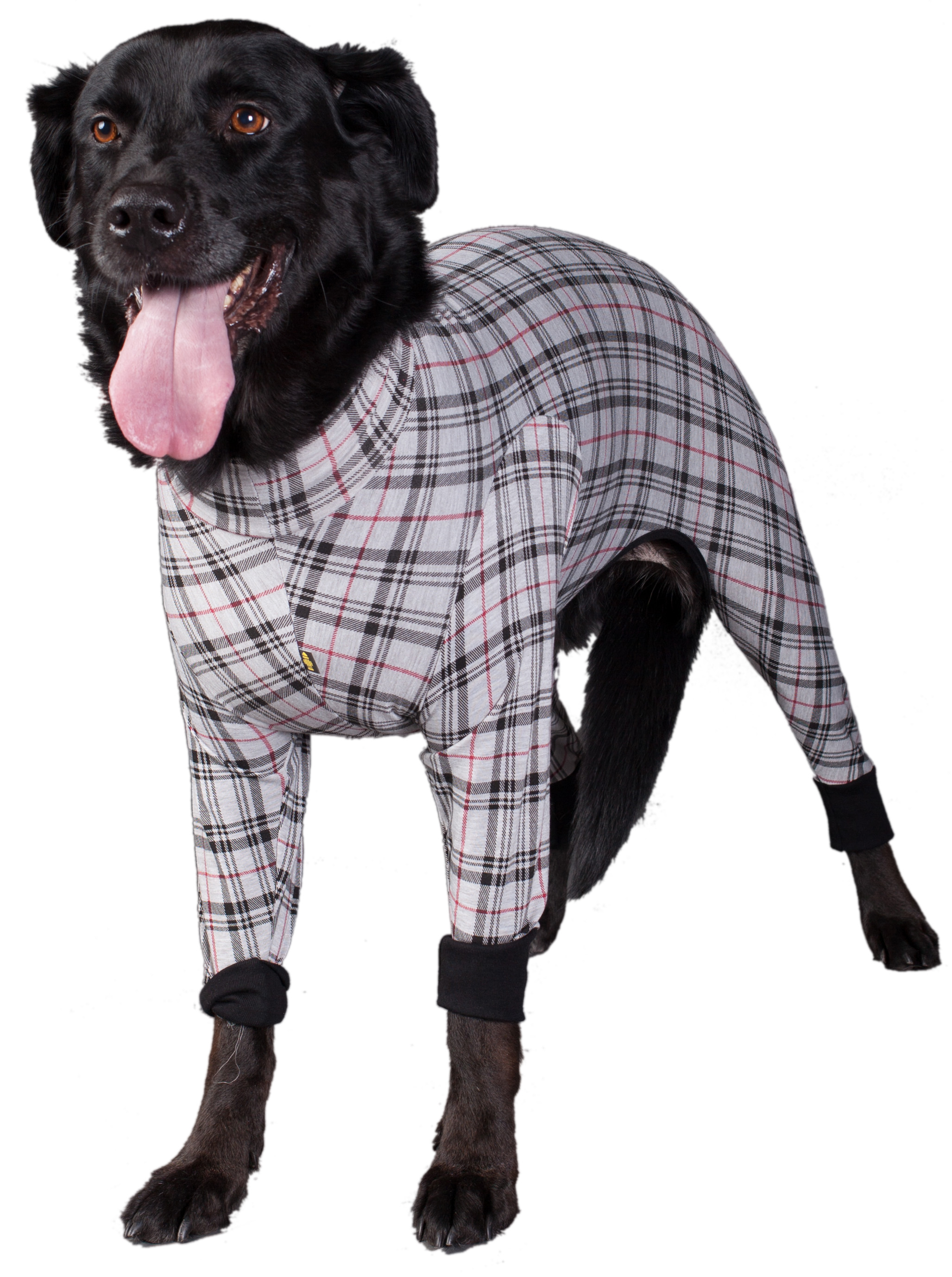 Onesies And Pyjamas For Dogs Dogfather And Co Canine Retail And