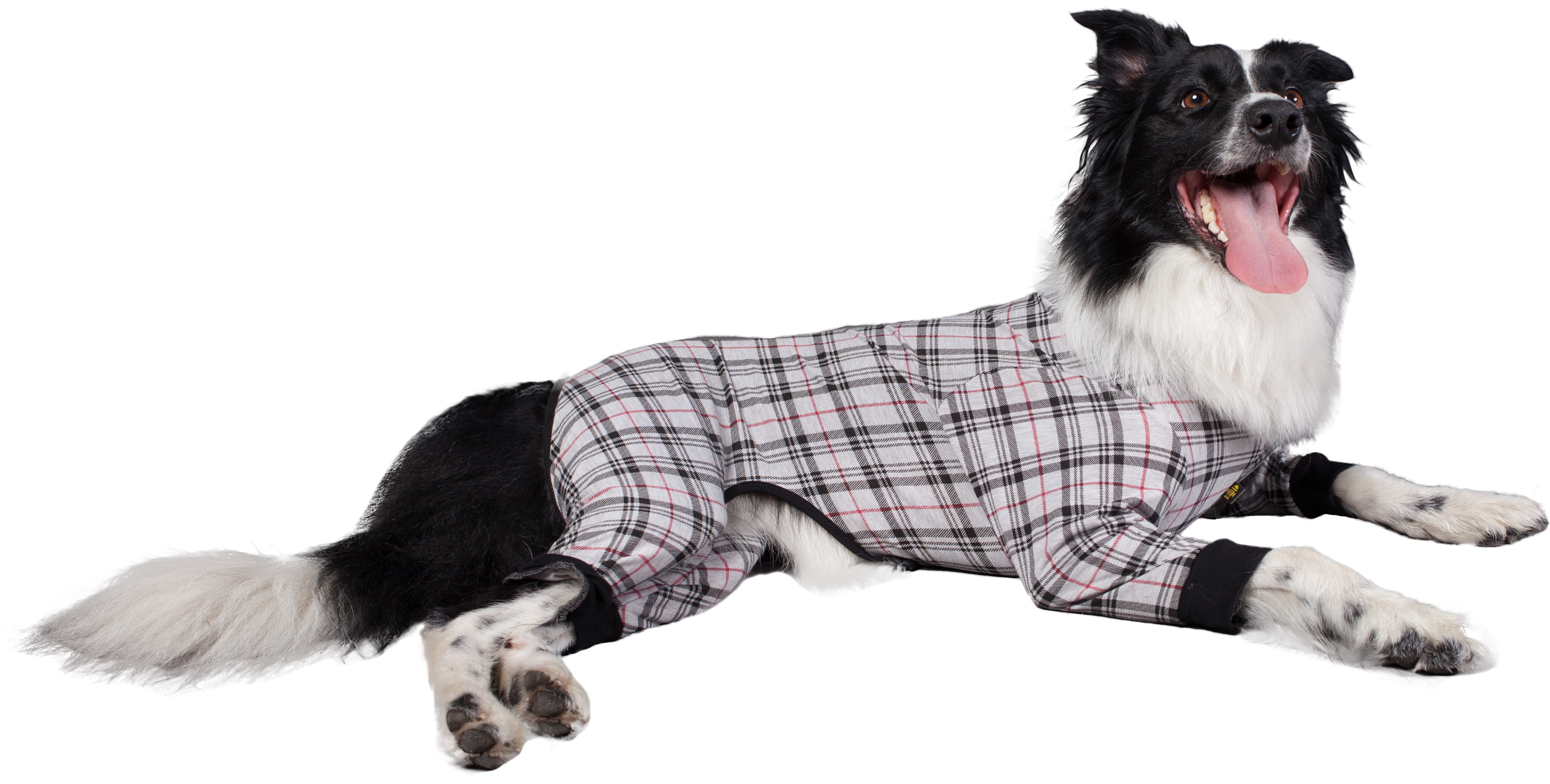 971ff97a6218 Onesies and Pyjamas for Dogs